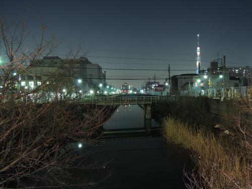 Nikon COOLPIX P310 東京スカイツリー AWB2